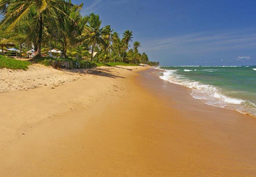 praia do forte salvador da bahia